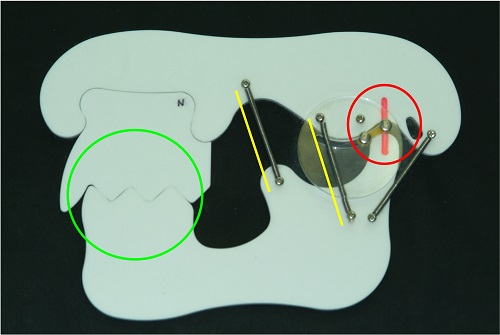 anterior cut out and tooth reference tmj