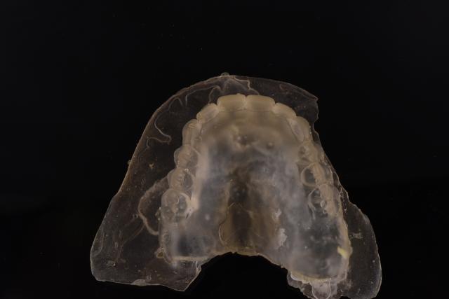 denture duplication flash
