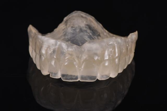 denture duplicate