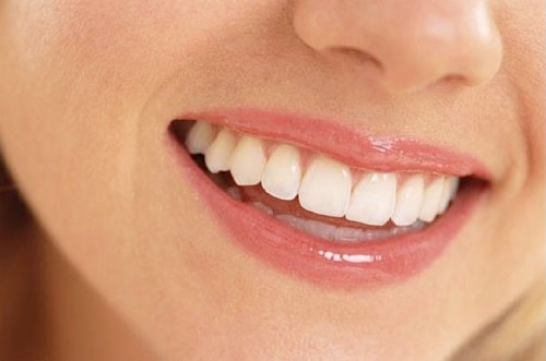 Study: Research Suggests Gingival Stem Cells Can be Used in Tissue Regeneration
