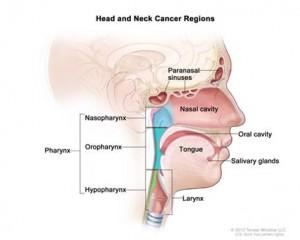 Oral Cancer 1