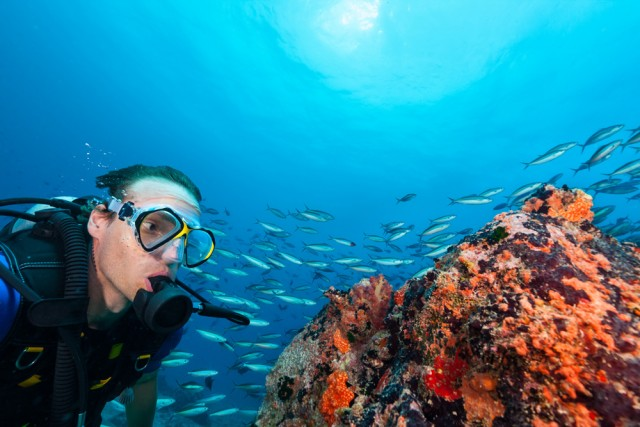 Are Scuba Divers Really at Significant Increased Risk for Dental Symptoms?